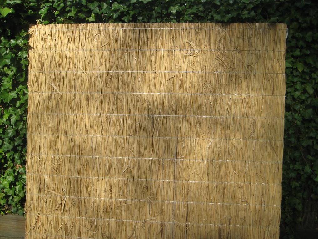 Rietplaat Nagy Natuurlijke afscheidingen Schermen  bij Houthandel Jan Sok
